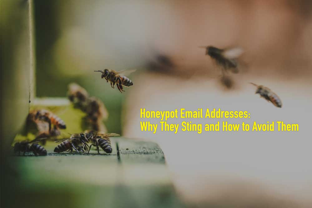 Honeypot Email Addresses: Why They Sting and How to Avoid Them